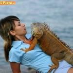 Animali_Testa_di_Pazzo (31)