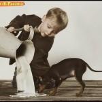 Animali_Testa_di_Pazzo (40)