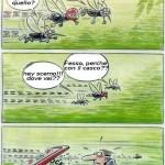 Animali_Testa_di_Pazzo (8)