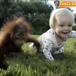 Bambini_TESTA_di_PAZZO (9)