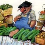 Perchè un cetriolo è meglio di un uomo