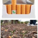 Filtri per sigarette biodegradabili con semi di fiori all'interno