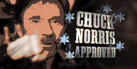 Chuck Norris facts #3