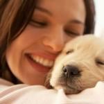 Abolito ogni divieto per gli animali domestici nei luoghi pubblici