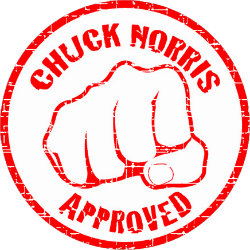 Chuck Norris facts #4
