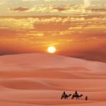 Due carabinieri si sono persi nel deserto: da vari giorni…