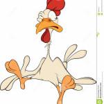 Un vecchio gallo non ce la fa più a soddisfare le galline del pollaio.