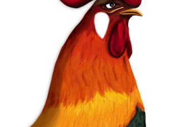 Un giovane gallo è arrivato nel pollaio,
