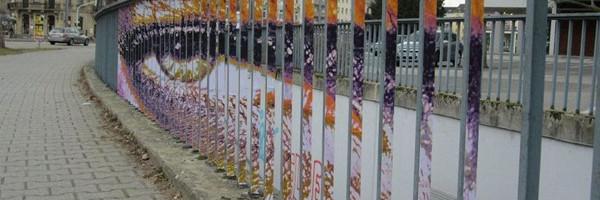 zebrating-street-art-9