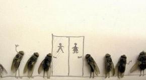 L'umorismo delle mosche morte