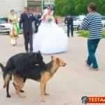 matrimoni (20)