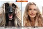 somiglianze_perfette (2)