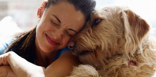 Anche i cani e gatti possono amare, è dimostrato scientificamente