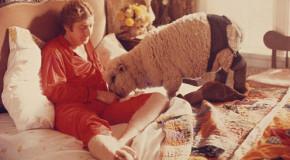 Abusò di una pecora, libero perché la vittima non testimonia
