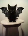 Halloween-pets-001