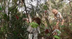 L'inquietante Isola de Las Munecas abitata da vecchie bambole