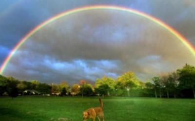 arcobaleno-arco