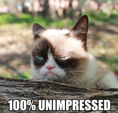 grumpy-cat-milionario