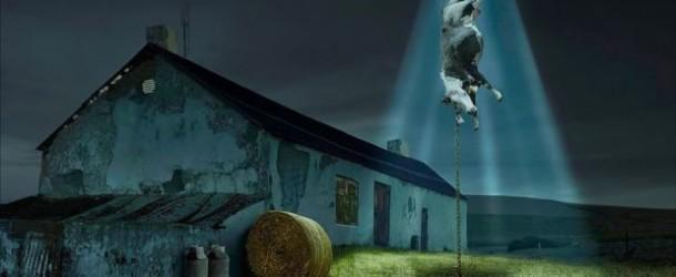 La curiosa passione degli extraterrestri per le mucche