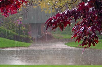 pioggia-e-odori